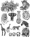 7 inch x 9 inch African Animals Unmounted Rubber Stamp Sheet