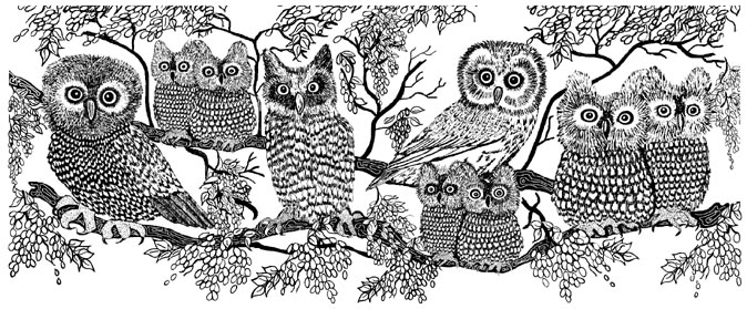 Owls Border Unmounted Rubber Stamp