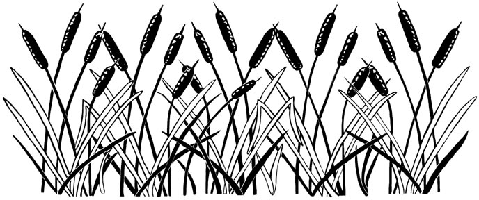 Cattails Border Unmounted Rubber Stamp