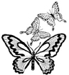 Butterfly Trio Wood Mounted Rubber Stamp