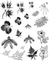 Botanical Unmounted Rubber Stamp Sheet