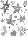 Fall Leaves Unmounted Rubber Stamp Sheet