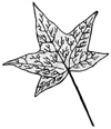 Botanical Fall Leaf Wood Mounted Rubber Stamp