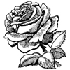Rose Little Stamper