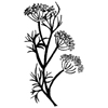 Dill Flowers Little Stamper